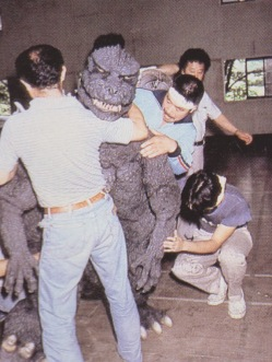 Satsuma 1985