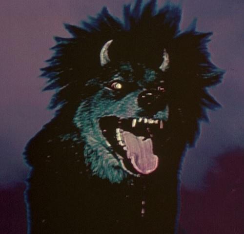 Devil Dog 1978
