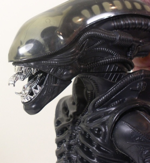 Alien-12