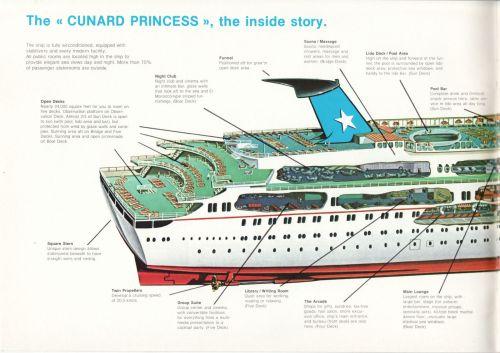 Cruise 79-2